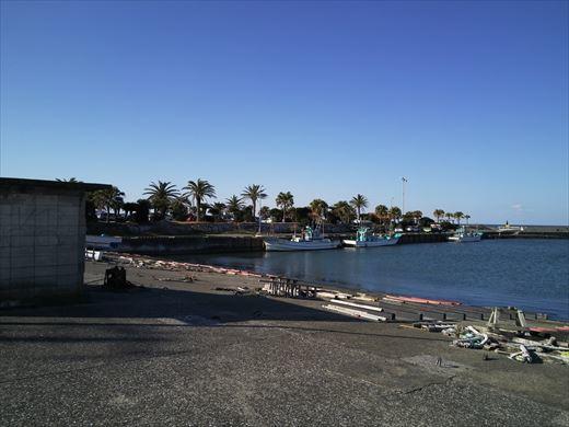 太東港釣り (19)