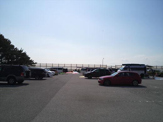 検見川堤防 (5)