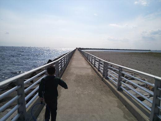 検見川堤防 (9)