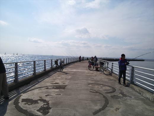検見川堤防 (10)