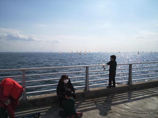 検見川堤防 (12)