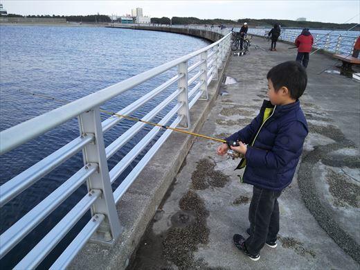 検見川堤防 (15)