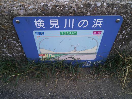 検見川堤防 (22)