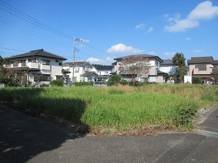 稲岡495-86