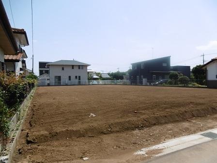 大角豆2011-438