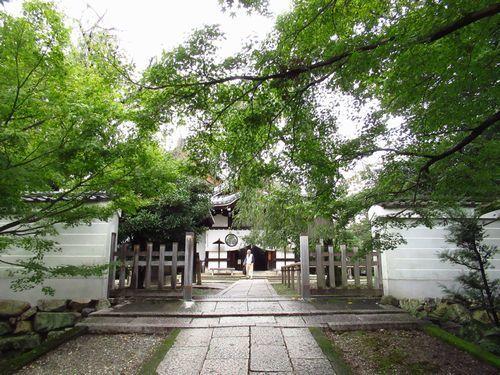 養源寺12