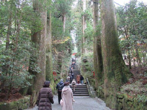 箱根神社15