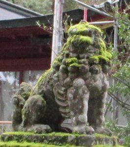 箱根神社31