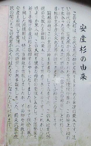 箱根神社34
