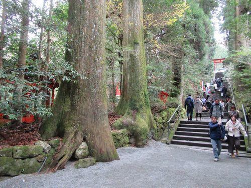 箱根神社38