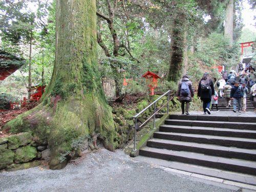 箱根神社39