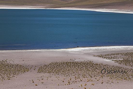 18-11-28_atakama-chile-0326.jpg