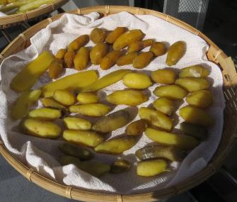 サツマイモ小芋の丸干し乾燥