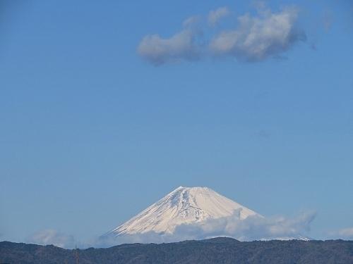 迎春2019年1月1日晴天、富士山
