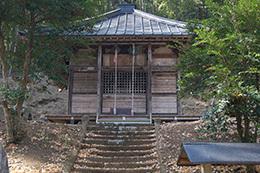 190220長徳寺の枝垂れヒバ5