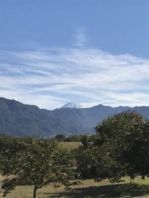 富士山 午後