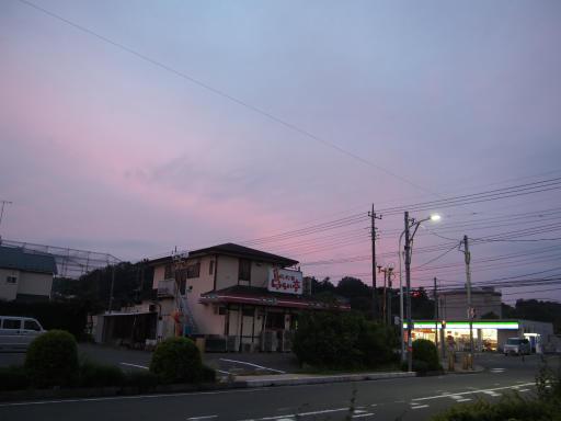 20181015・にゃーにゃー散歩03