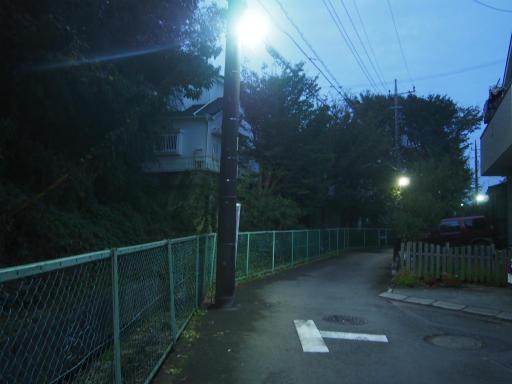 20181015・にゃーにゃー散歩01