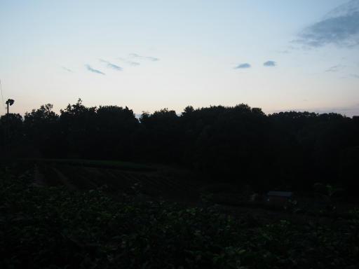 20181018・狭山湖撮影1-08・18日5時49分