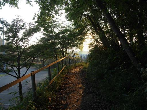 20181018・狭山湖撮影2-09・18日6時27分