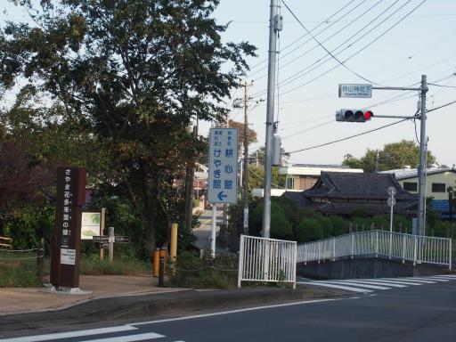 20181020・狭山湖箱根ヶ崎4-06・懐かしい