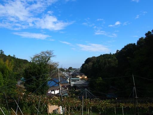 20181020・狭山湖箱根ヶ崎空11・三ケ島ぶどう園・中