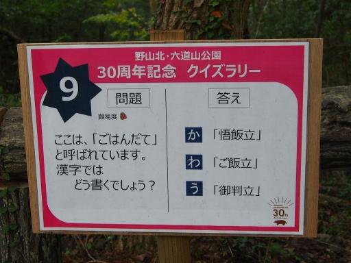 20181020・狭山湖箱根ヶ崎ネオン04