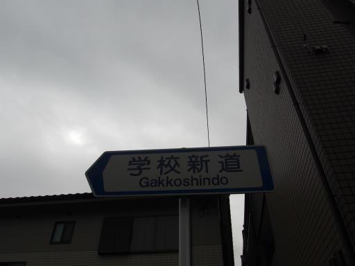 20181216・クリスマス前、所沢空09