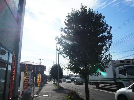 20181216・クリスマス前、所沢空23