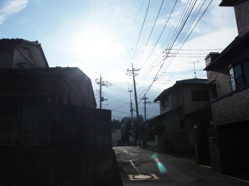 20181216・クリスマス前、所沢散歩01