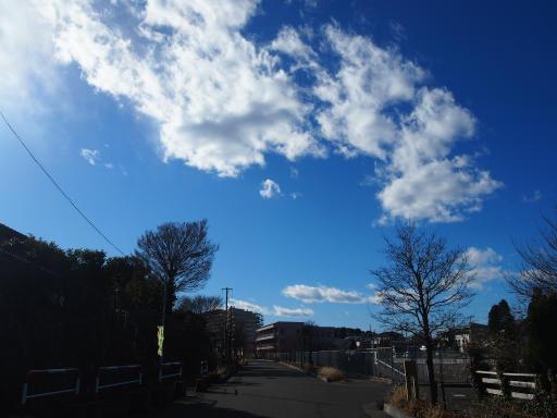 20181230・今年最後の散歩04