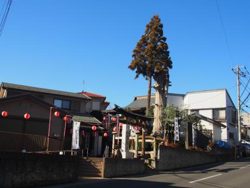 20190101・正月初詣26・八雲神社