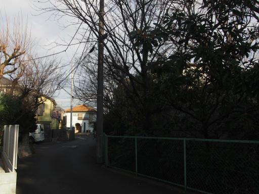 20190114・近所の穏やかな空02