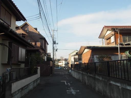 20190114・近所の穏やかな空18