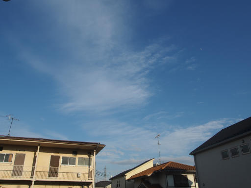 20190114・近所の穏やかな空15