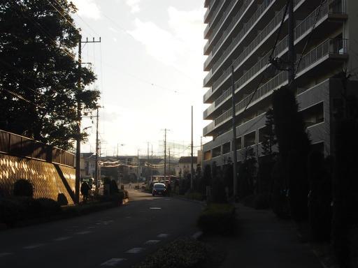 20190120・全徳寺散歩1-06