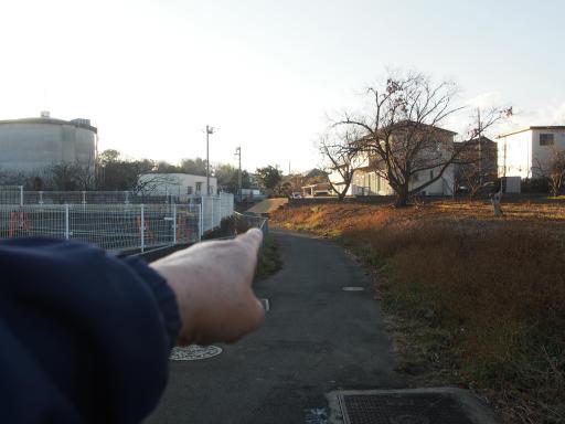 20190120・全徳寺散歩1-15
