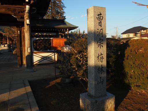 20190120・全徳寺散歩2-05