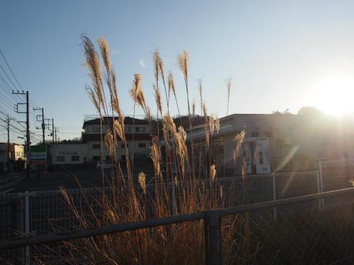 20190120・全徳寺散歩空06