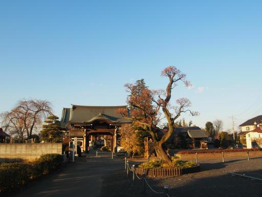 20190120・全徳寺散歩空10・全徳寺に到着