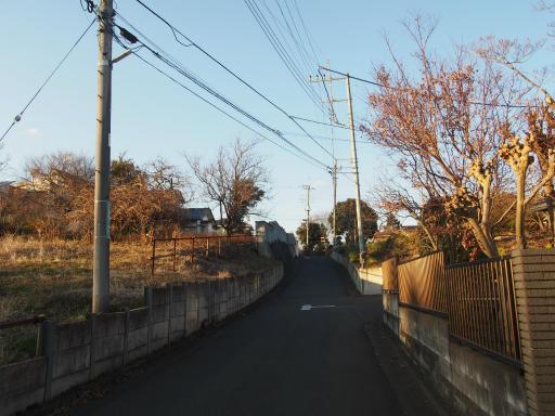 20190120・全徳寺散歩空08