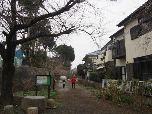 20190209・雪の日散歩空02