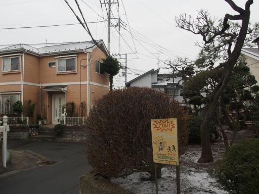 20190209・雪の日散歩空08・大