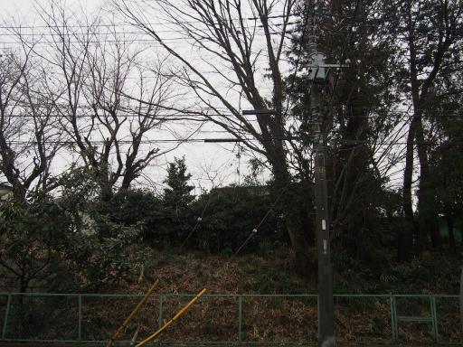 20190209・雪の日散歩04