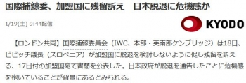 news国際捕鯨委、加盟国に残留訴え 日本脱退に危機感か