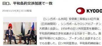 news日ロ、平和条約交渉加速で一致