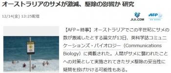 newsオーストラリアのサメが激減、駆除の影響か 研究