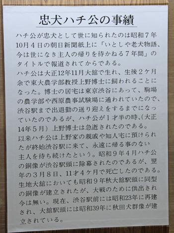 秋田犬会館2019-12
