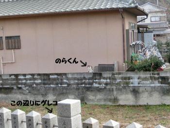 2019-02_11_08.jpg