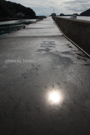 IMG_6600竹ヶ島